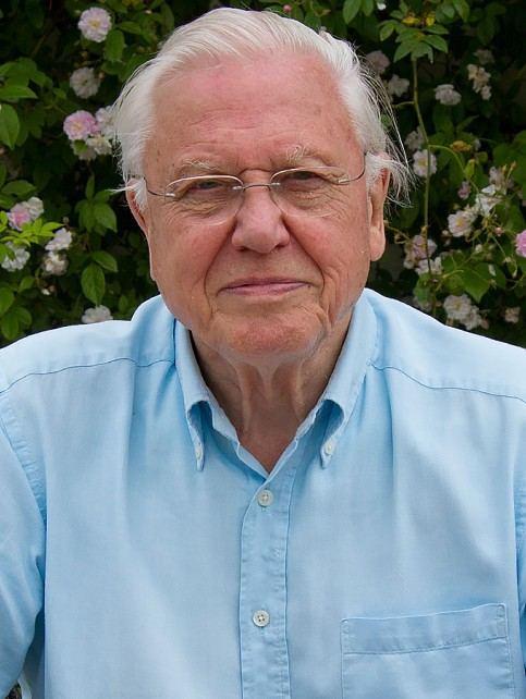 David Attenborough - Profile Image