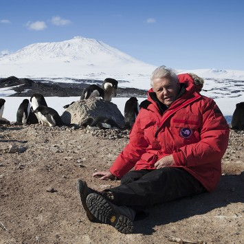Frozen Planet - David Attenborough interview