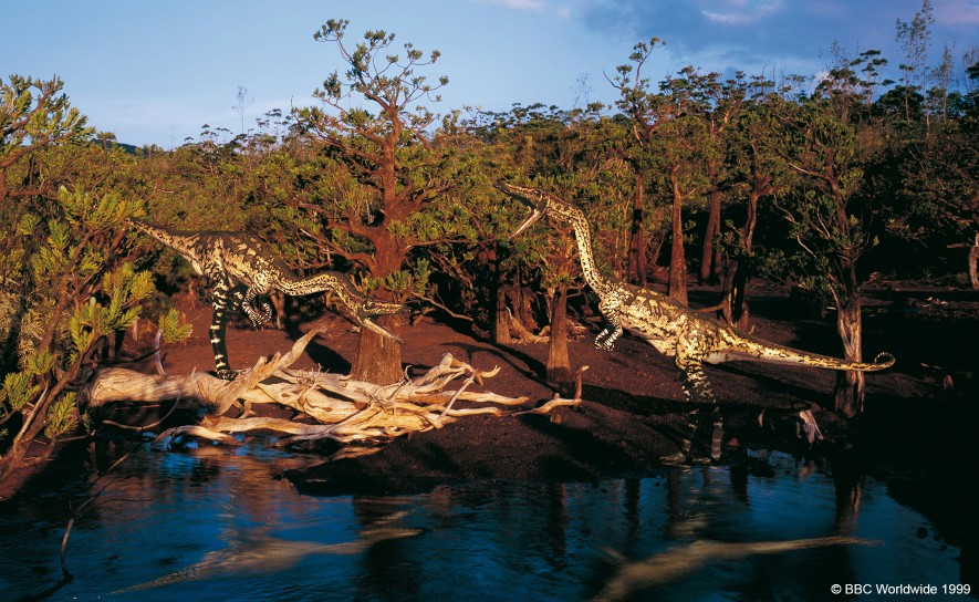 Coelophysis at the river's edge.