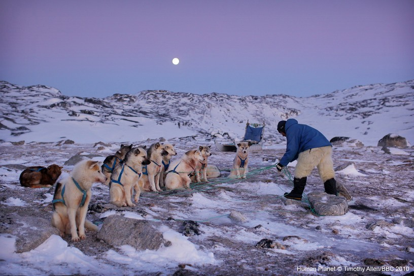 Ilulissat, Greenland. Inuit hunters feed their dogs before setting out across the ice shelf.
