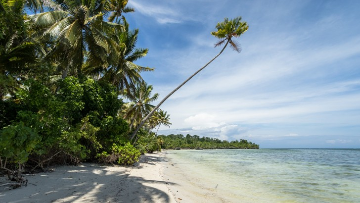 Islands are often thought of as a picture of paradise - palm trees and white sandy beaches (Credit: Dr Vivien Cumming)