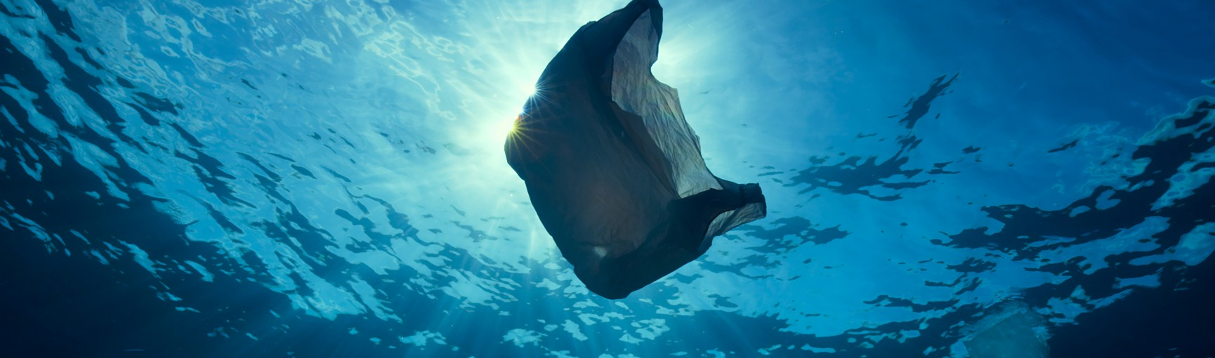 Why Marine Animals Can T Stop Eating Plastic Blueplanet2 Our Blue Planet